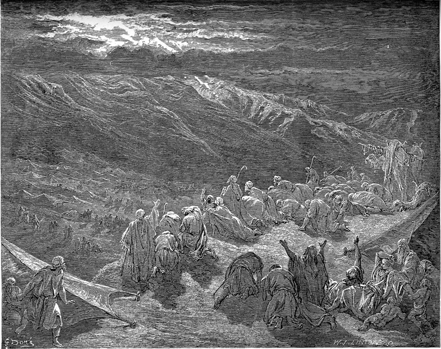 Dor Bible Illustrations Bible Gateway Blog